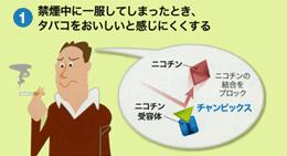 内服禁煙治療薬の作用機序